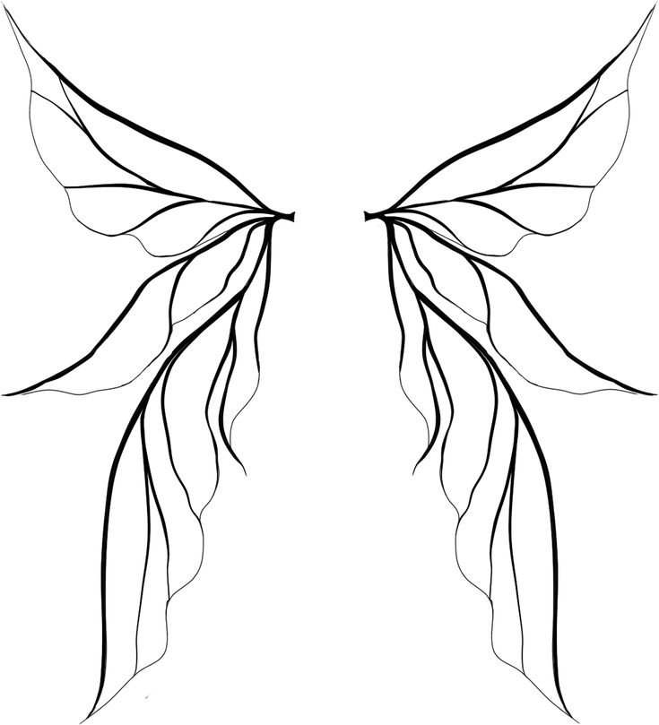 Tinkerbell Wings Drawing | Clipart Panda - Free Clipart ...