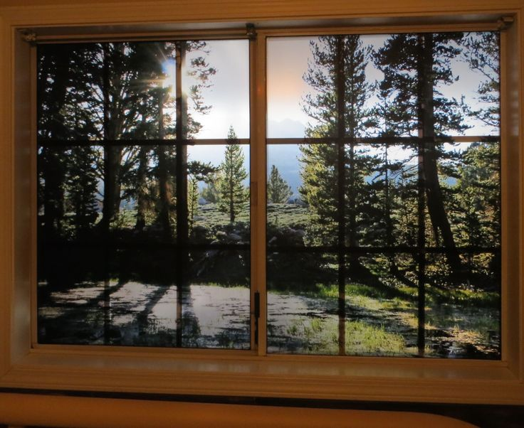 1000 Images About Custom Printed Window Film From