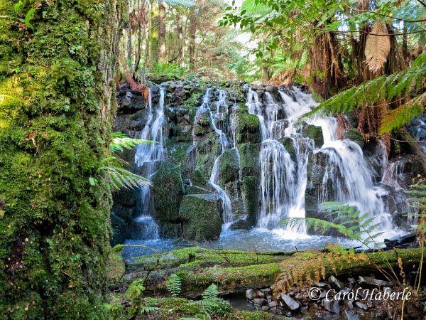 Waterfall in Tasmania - Lockwood Creek Falls