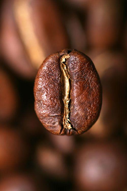 * grain de café *