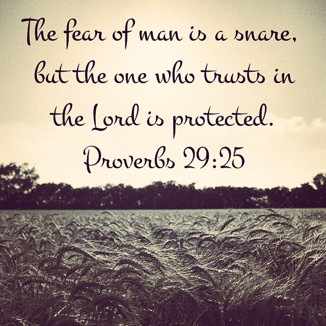 Image result for proverbs 29 the one who trusts the lord is protected