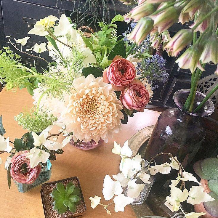 2017.5.28 お花のある休日♡ ・ ・ →@kurufleur展開中��✨ ・ ・ ・ #flower #flowers #flowerslovers #flowerstagram #フラワー #kurufleur #花 #植物 #kurumoto_teruyo_hk #hibiyakadan #hibiyakadan_otd #日比谷花壇 #花のある暮らし #植物のある暮らし  #花好きな人と繋がりたい #着物 #キモノ#きもの #ボタニカル #シルキーピーチ #マム #シクラム #アイビー #バラ #ピンクラナンキュラ #ブルーパフューム #ブラックベリー #ハオルチア #インテリアフラワー #インテリア http://gelinshop.com/ipost/1524345435660367616/?code=BUnkBjvhjcA