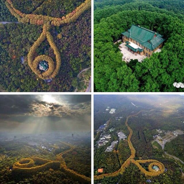 """The Most Beautiful Necklace Seen only from Bird's View in #China Recently a group of aerial photos of the most beautiful necklace goes viral on China's social media, and it turns out to be the ""May-ling Palace"" in East China's Nanjing city. Soong May-ling played a prominent role in the politics of the Republic of China in the 1940s, her villa is also know as the ""May-ling Palace"". Built in the 1930s, it is a blend of Chinese and Western architectural design. It is now a sight-seeing spot…"