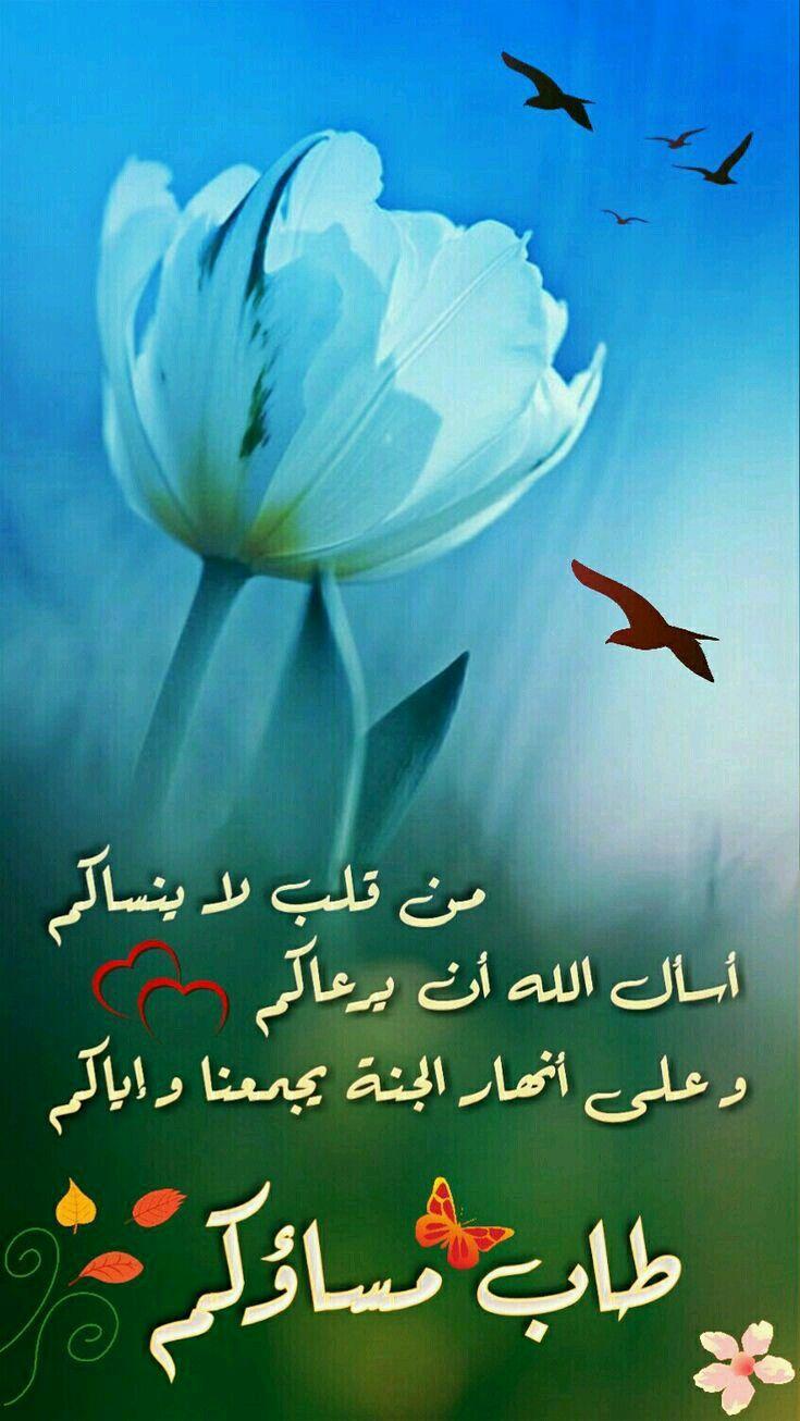 Pin By الصحبة الطيبة On مساء الخير Good Night Image Good Morning Images Good Evening