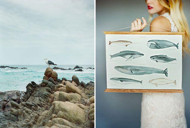 Sea Inspiration:
