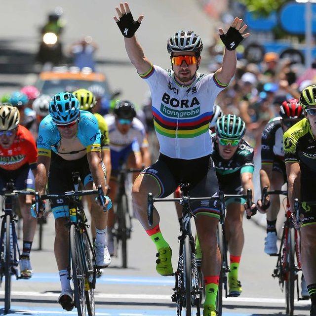 Peter Sagan / Bora - hansgrohe / se ha impuesto en la cuarta etapa del Santos Tour Down Under con final en Uraidla y de paso es el nuevo líder de la prestigiosa prueba australiana que cumple 20 años. Santos Tour Down Under (AUS/2.   #petersagan #TourDownUnder