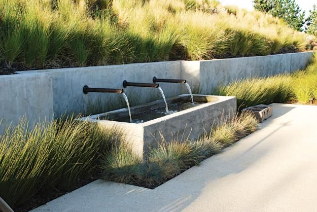 Great use of grasses.  Nice fountain too.  The Farm at Cape Kidnappers by Thomas Woltz.