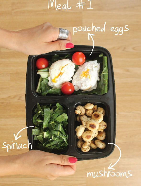 7 Days Of Healthy Meal Prep Ideas – Ready To Eat Meals and Protein On The Go With The Best Meal Containers