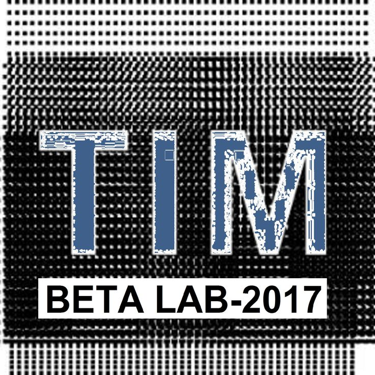 TIM º BETA º LAB º 2017