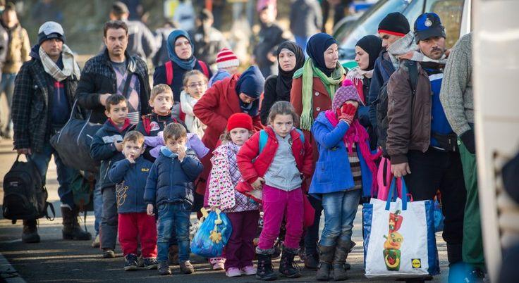 Gutachten zur Flüchtlingskrise: Regierung verteidigt Grenzöffnung - SPIEGEL ONLINE - Politik