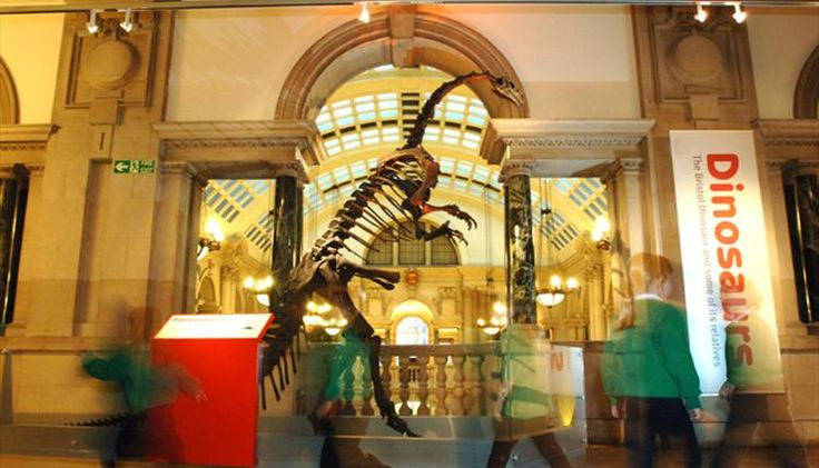 FREE Bristol Museum & Art Gallery guided tour on 11th Thursday