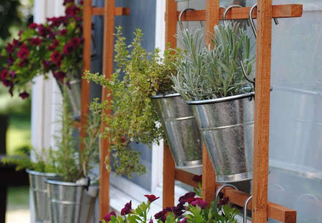 102 Best Images About Vertical Gardening On Pinterest