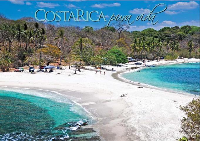 https://i.pinimg.com/736x/05/a6/51/05a65135b3e6d3bc899a492a74b92823--nosara-costarica.jpg