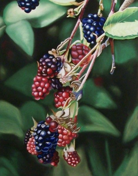 """""""Coming of Age"""" nature art by Melanie Cossey - contemporary realism"""