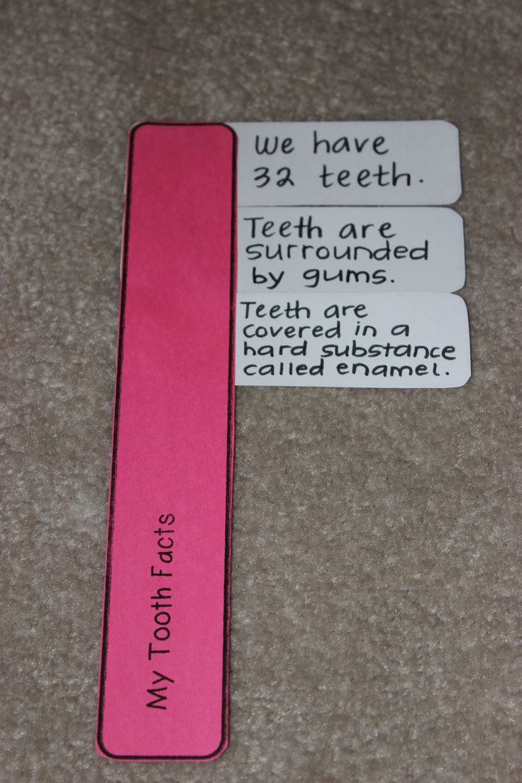 Teach-Dream-Inspire: Toothbrush Facts about Teeth