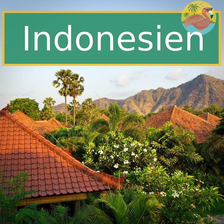 Bali, abseits vom Massentourismus. Wir nehmen dich mit in den noch weniger besuchten Norden Balis. Hier warten Korallenriffe, Tempel und das ursprüngliche Leben. Lust auf Abenteuer!? Eine Tour in den Krater des Mount Ijen ist was für Vulkanfans. Blaues Feuer und den grössten Kratersee der Erde findest du bei dieser Wanderung auf Java.
