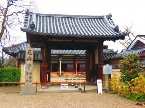 Nara temple gangoji 14