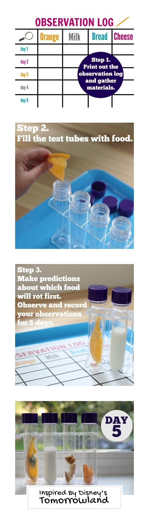 Gather your materials and print the observation log. Then fill the tubes with food and make predictions which food will rot first. Inspired by the movie Tomorrowland.