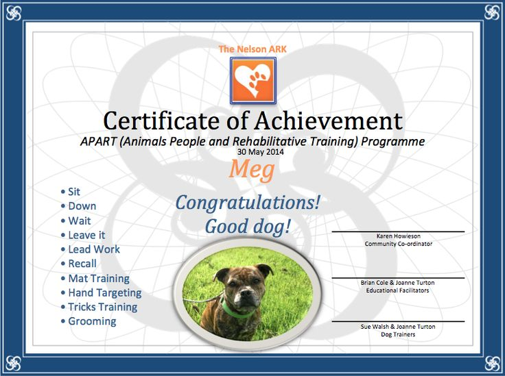 Upon course completion, the dogs and students participate in a graduation day and receive their certificates...
