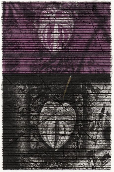 SEED Project:A4 Little Prints, No36 title : 花の記憶 -連・想 size : 15.5 × 10.2 cm  ...