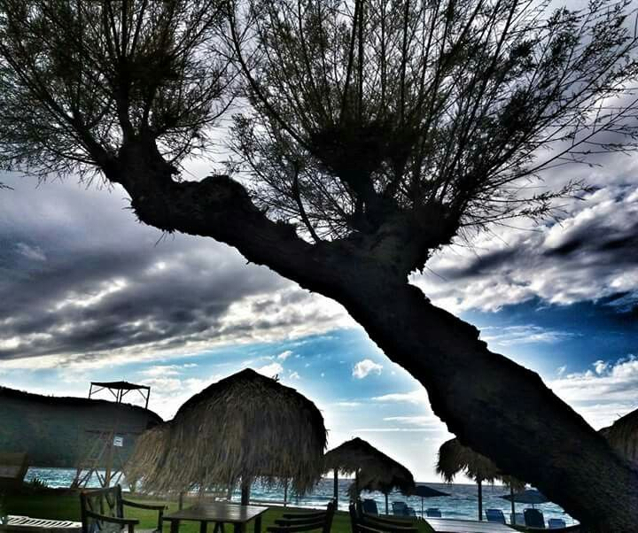 Agios Ioannis Lefkada  Milos beach bar