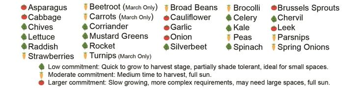Autumn Planting Guide For Melbourne - Leaf, Root & Fruit Gardening Services Hawthorn