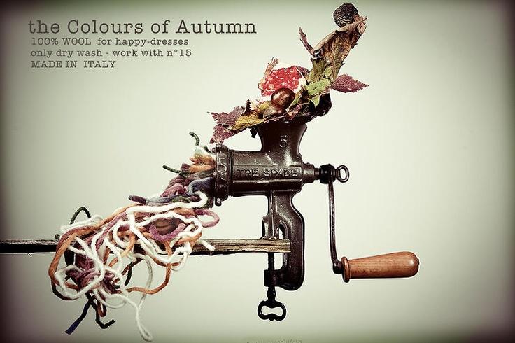 theColoursOfAutumn by aureliobiocchifoto @ http://adoroletuefoto.it
