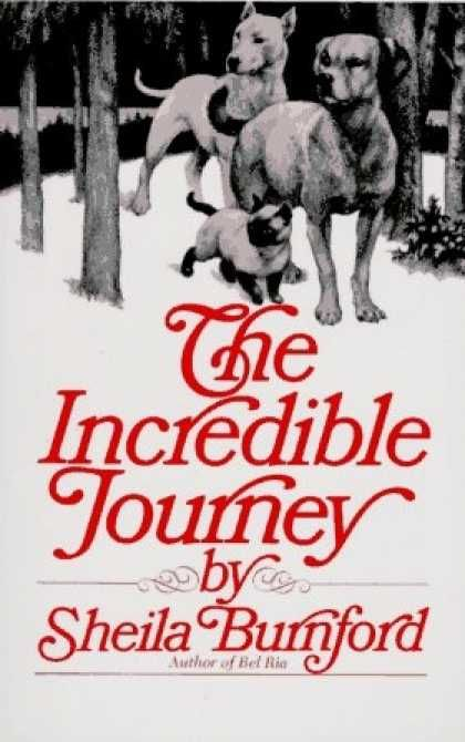 The Incredible Journey by Sheila Burnford The remake was just as good as the original and it was one of my all time favorites. I named my Beautiful Sassy after the kitty in this.