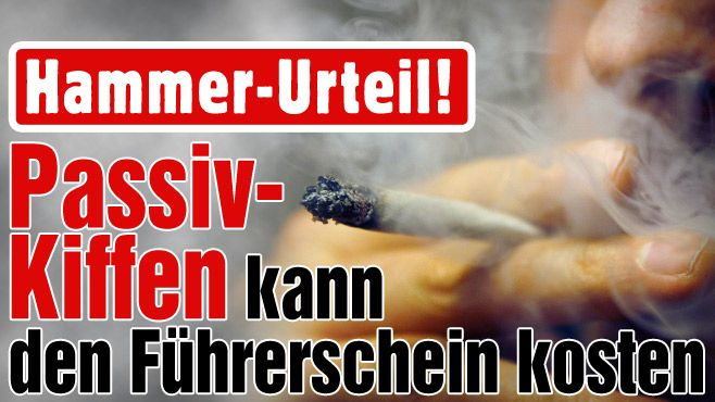 Passiv-Kiffen kann den Führerschein kosten! http://www.bild.de/auto/auto-news/marihuana/drogen-gras-marihuana-haschisch-rauchen-kiffen-autofahren-gericht-richter-urteil-39658608.bild.html