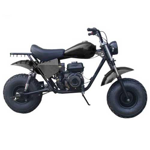 TrailMaster MB200-1 Mini Bike  Familygokarts.com