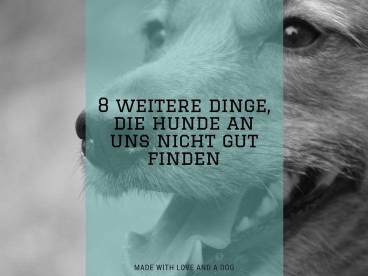 Nach unserem Artikel 8 Dinge, die Hunde gar nicht toll an uns finden, folgt heute die Fortsetzung. Einer Auflistung, warum wir Menschen so sind, wir nun mal sind und das unsere Hunde dies gerne mal…