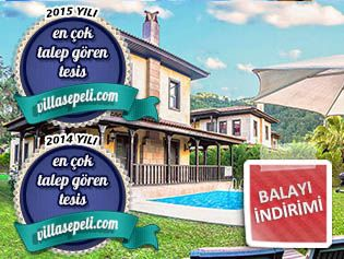 Villa Sarı resim 1