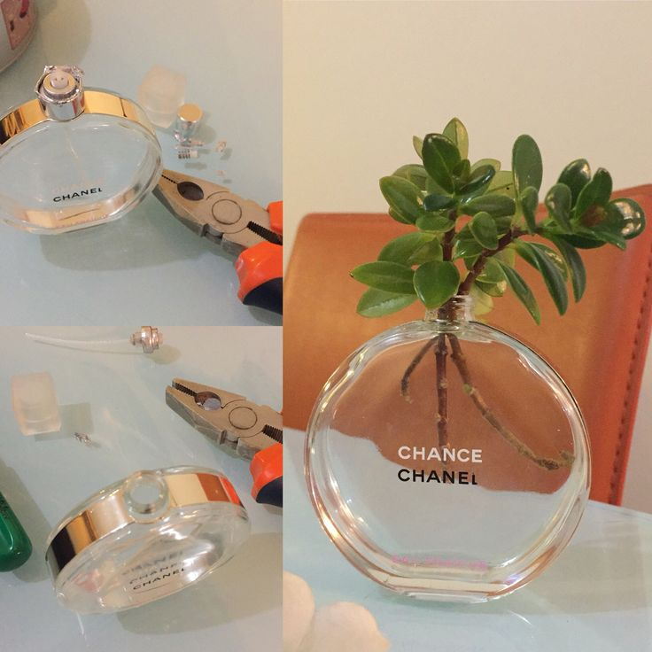 Turn a empty perfume bottle in a cute flower glass.