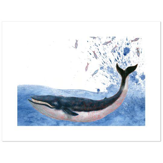 Martijn-van-der-Linden-Jacques-de-walvis-PRINT-51,91x39,22
