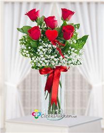kırmızı güllerin dansı