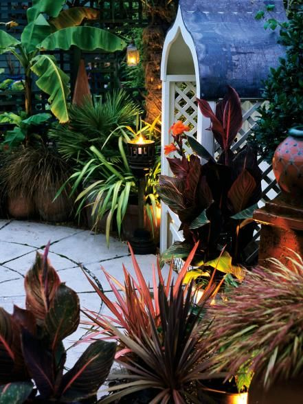 Come in out of the darkness with these landscape lighting solutions.
