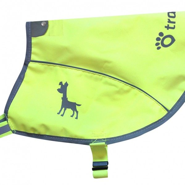 Make sure your pet wears its neon visibility vest wherever you are walking.