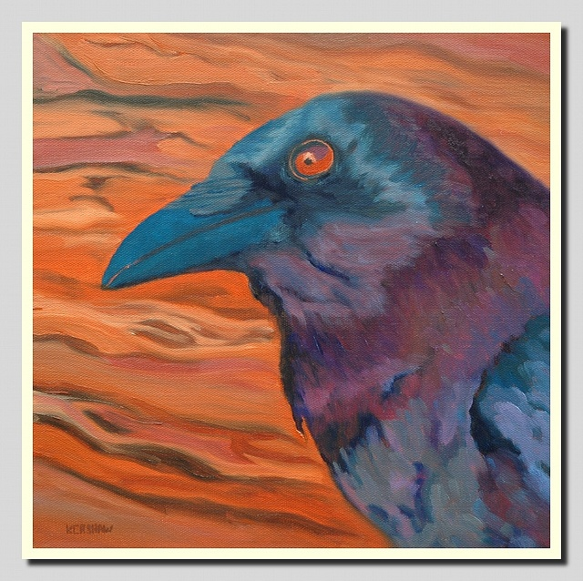 Crow Head    12 in. x 12 in. oil on canvas