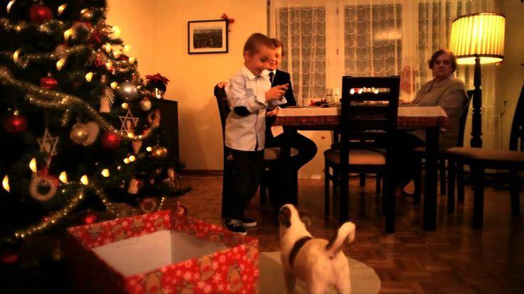 Zwierzęta to najgorszy prezent dla dziecka,to nie są zabawki.
