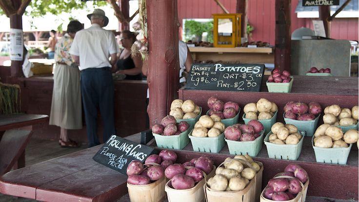 Farm Markets - Shop our farm markets or pick your own! ...details