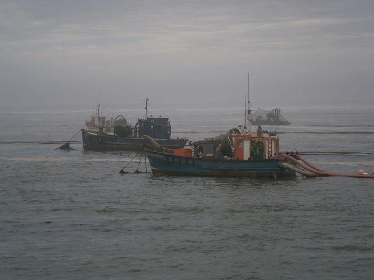 Port Nolloth Diamond boats in the mist
