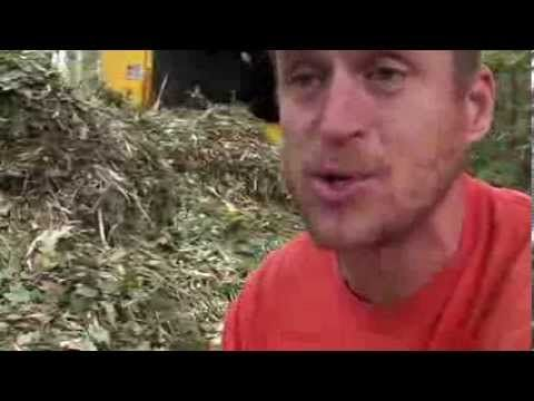 I shot this video to show exactly what the wood chip mulch that tree service wood chippers looks like. To get a load delivered free, go to freemulch.abouttre...