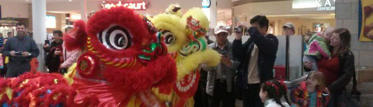Greater Lansing's 2014 Chinese New Year celebration   Panethos