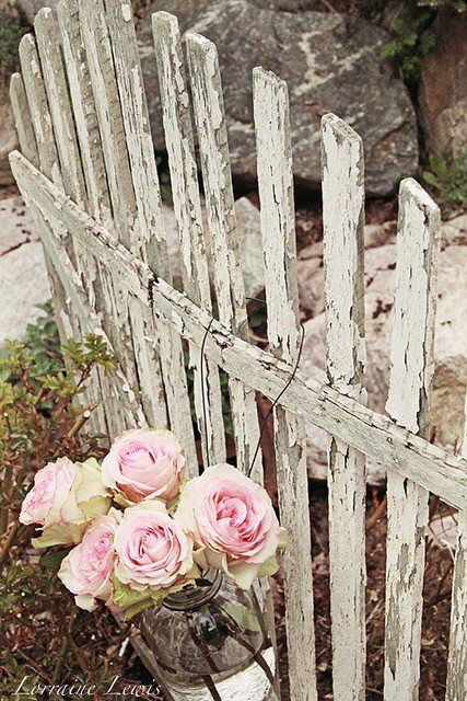 Shabby Garden Fence With Pink Roses #diy #outdoors
