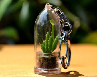 Shining Knight Cactus Terrarium Plant Keychain by WearItMiniPlants