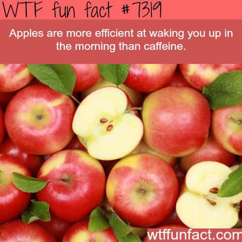 Apples are better than caffeine - WTF fun fact