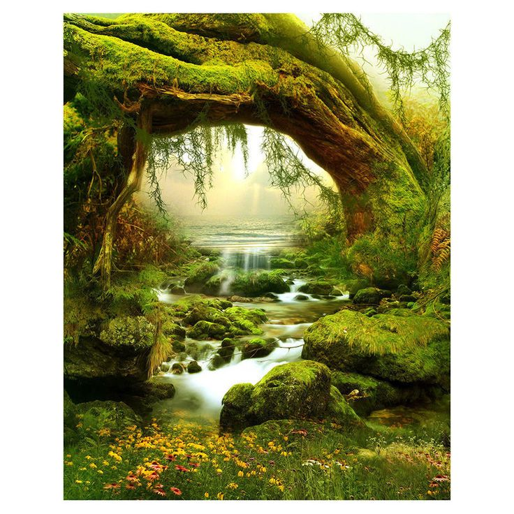 5X7FT Vinyl Backdrop Photography Prop Fairy Tale Scenic Photo Background ED