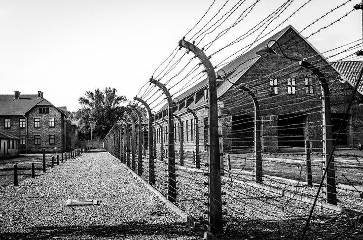 Fence line of the camp    nfaraldos on Flickr.