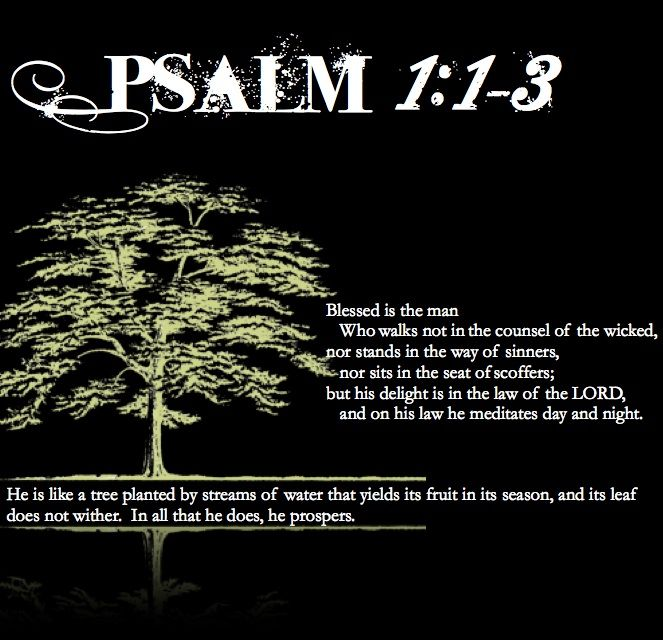 Psalm1 1 3 My Favorite Psalm Great Reminder