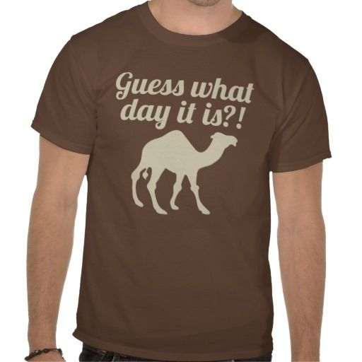 Camel Wednesday Hump Day Funny T-shirt Design - many styles and colours, both men's and lady's / women's (t-shirts, tee, tees, t shirt, tshirt, creative, cool, graphic, style, text, brown, vintage, retro)
